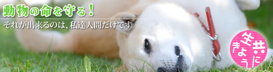 動物の命を守る!それが出来るのは私達人間だけです。